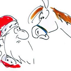 Ich wünsche mir ein Pony zu Weihnachten Witze