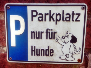Hundeparkplatz Schild. Ironie oder Ernst?